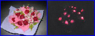 Светящиеся живые цветы