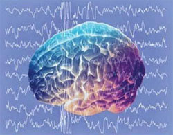 Худеем с помощью электроники или Ритмы мозга против переедания