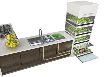 Огород в шкафу или Гидропоника на кухне