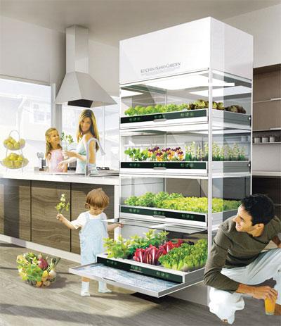 Шкаф для выращивания зелени и овощей в квартире