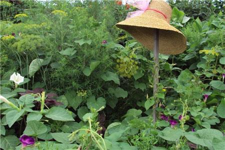 Огород на бывшей шате