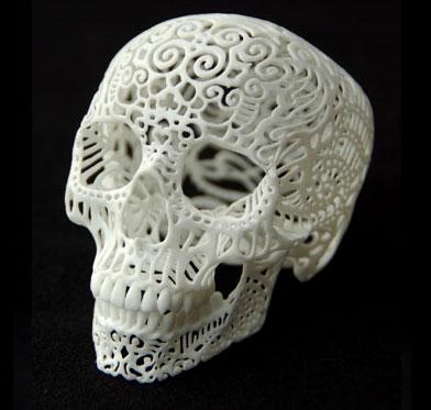Ажурная модель черепа в профиль