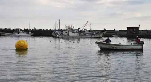 Спасение ноева ковчега в открытом море