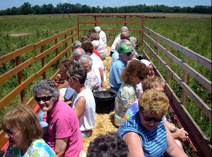 Экскурсия на американскую ферму бизонов