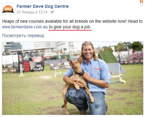 Фермер - не просто тренер, он дает собакам работу