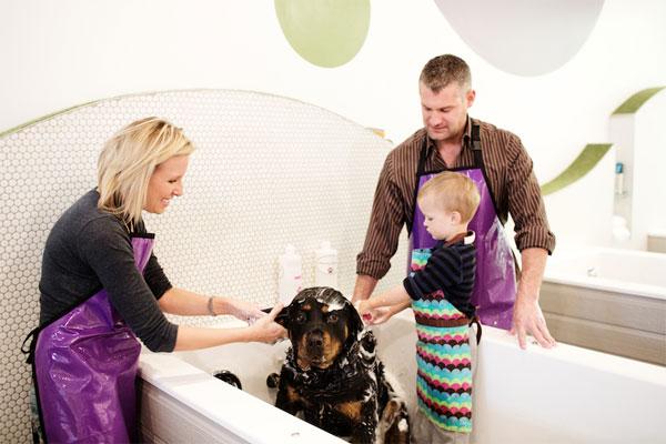 Собаку можно помыть самому, всей семьей