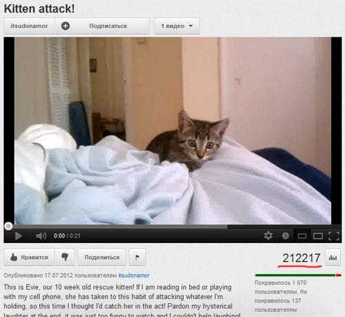 Более 200 тысяч просмотров видео за одни сутки