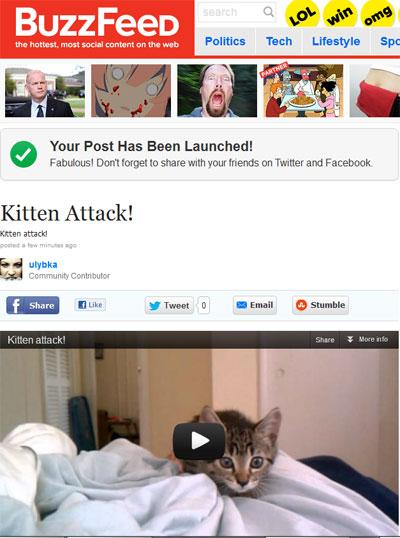 Мое первое видео - Котенок атакует!