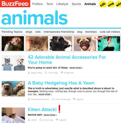 Раздел Животные на buzzfeed.com