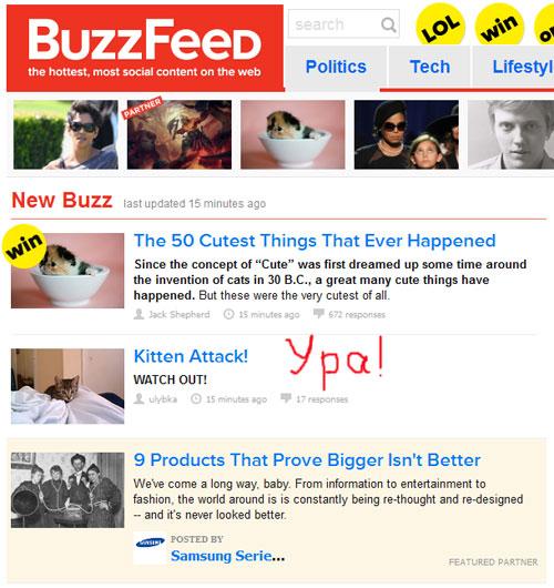 Атакующий котенок - на главной странице buzzfeed.com