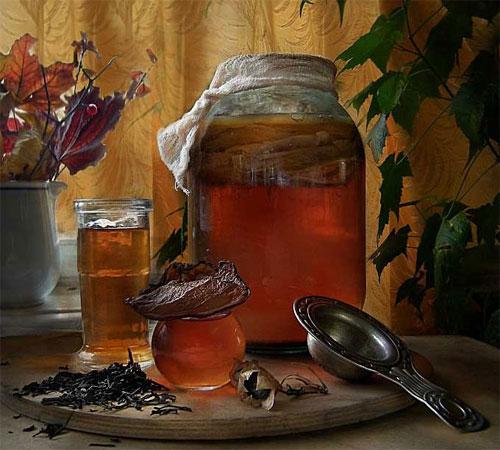 Чайный гриб в розлив