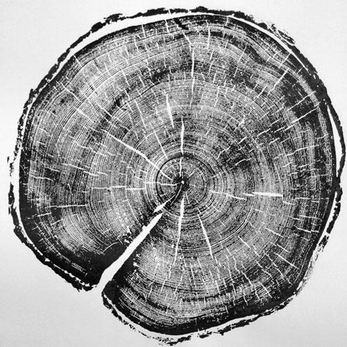 Отпечаток спила дерева