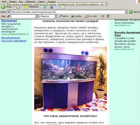 Страничка с сайта www.infoseller.ru, откуда Google взял картинку