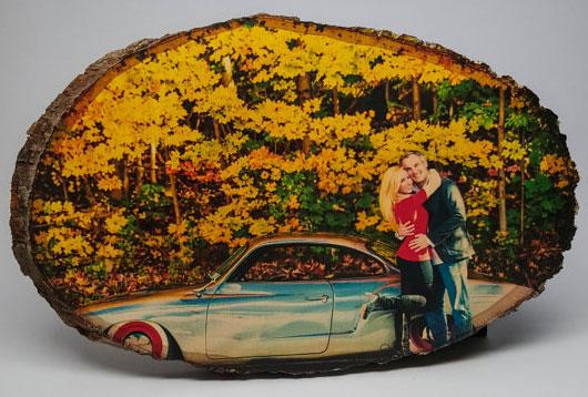 Фото на спиле дерева