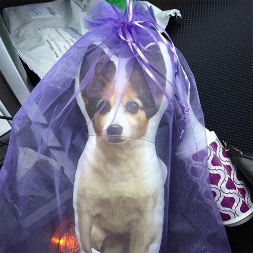 Подушка с фотографией любимой собаки