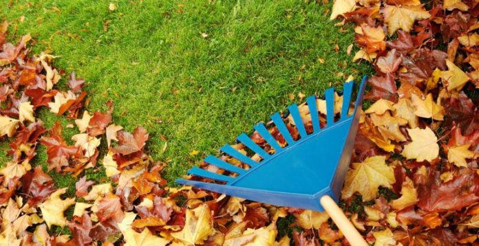 Осенний бизнес