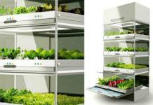 Огород в шкафу