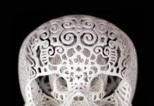 3d модель черепа