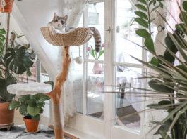 Дерево-башня для кошки