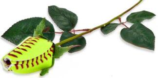 Искусственные розы, сделанные из спортивных мячей
