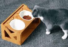 Регулируемая кормушка для кошек