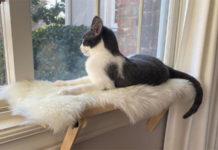 Подоконник-скамейка для кошки